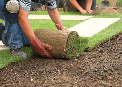 landscape-remodels-renovations-gilbert-az-mesquite-landscaping